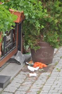 śmieci w Legnicy zawsze po drodze ?
