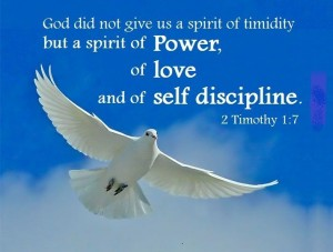 holy_spirit_tm